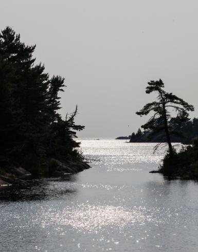 Bustard Island anchorage 7-4-10