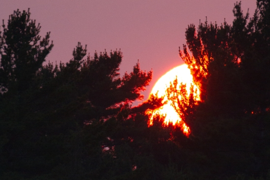 sunset at bustard islands