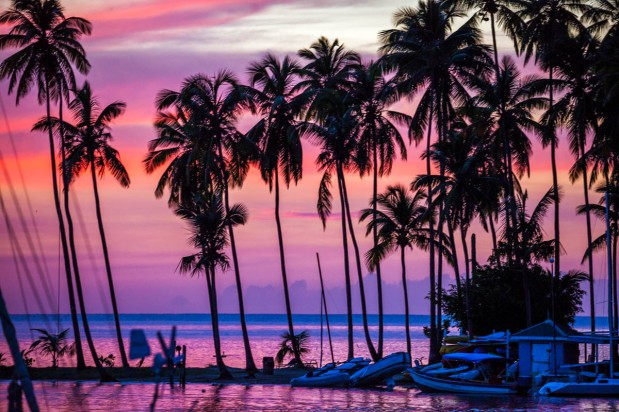 From Marigot Bay to Rodney Bay then to Martinique (November 8, 2016 to November 26,2016)